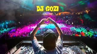 DJ Gozi - Electro House Valentine Mix 2015