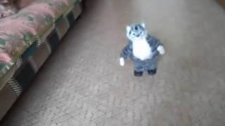 Игрушка кот танцует и поет. Реакция собачки  Жули.