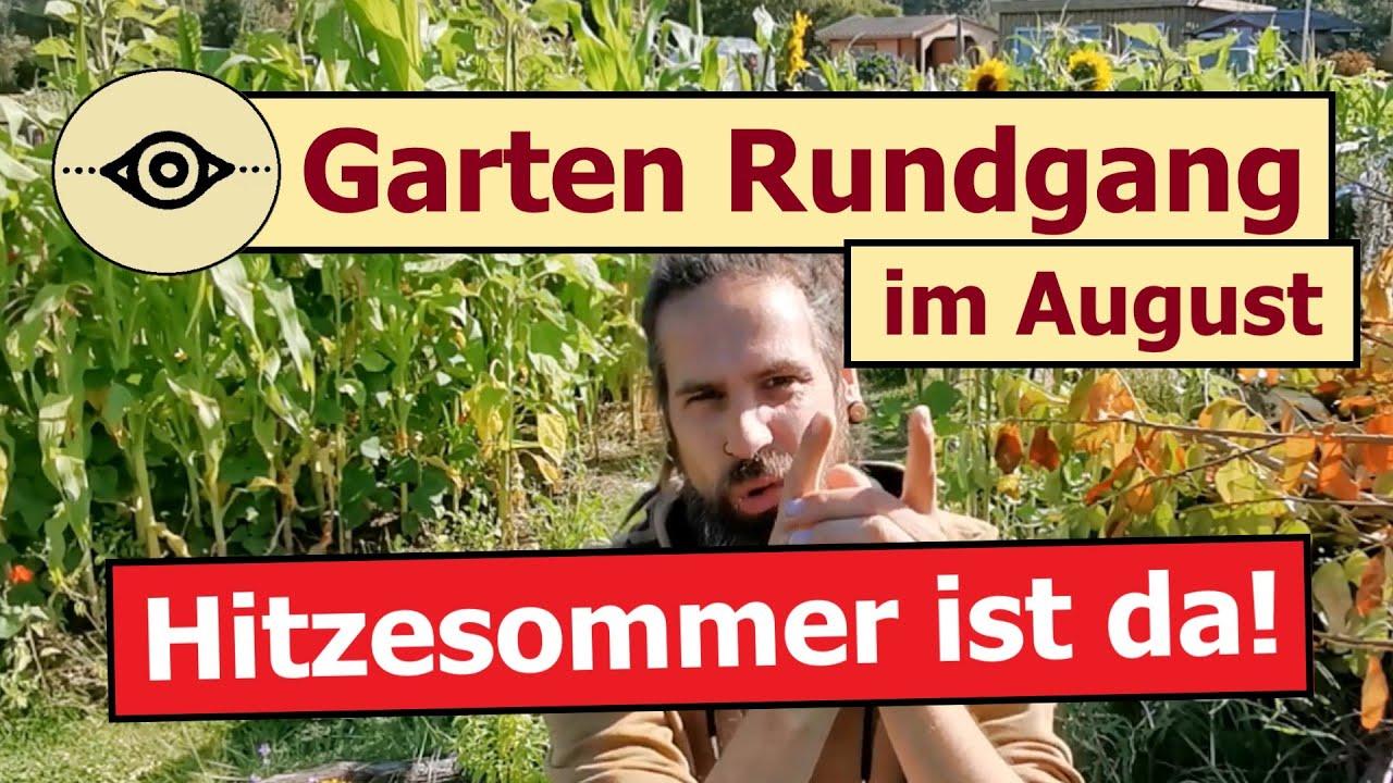 🌞 Hitzesommer in der Permakultur | Großer Gartenrundgang im August 🌱  | 🎬 Folge 160