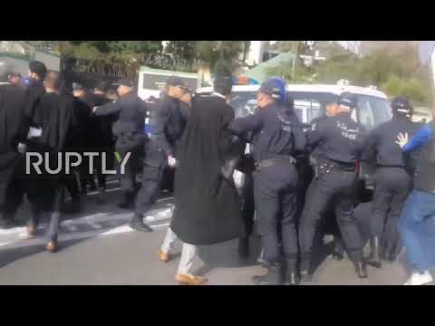 Algeria: Robe-wearing lawyers protest against Bouteflika 5th term bid