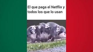 MEMES MEXICANOS 14