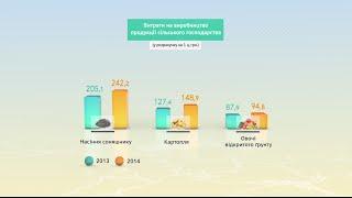 Видеоинфографика. Украина сегодня.