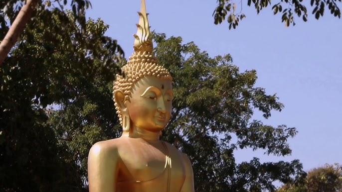 Comandați online cartea Buddha Bowl din peste de recenzii