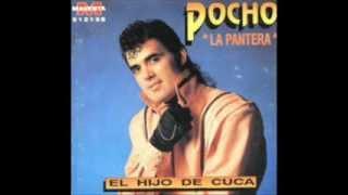POCHO LA PANTERA - EL HIJO DE CUCA