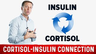 The Connection Between Cortisol (stress) and Insulin (sugar)