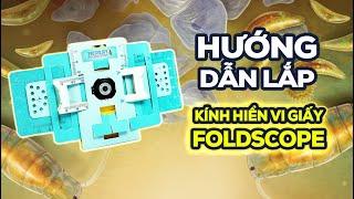 [Board Game VN] Hướng dẫn lắp Foldscope - Kính hiển vi giấy