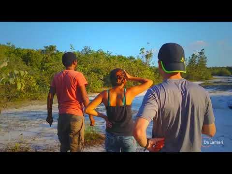 TRAVEL VLOG #3 | Suriname: Road trip with Drew Binsky and Steve-O, Brownsberg, Savanna