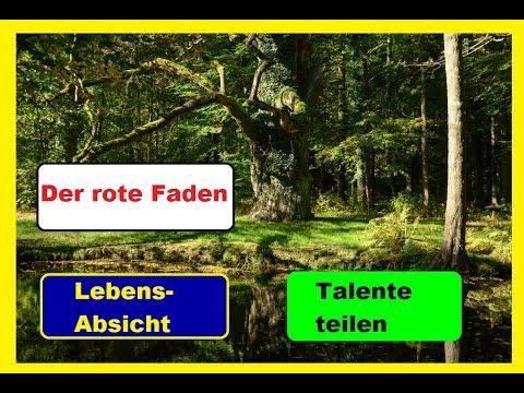 Wald,Weisheit,BewusstSEIN #3: Roter Faden, Lebens-Absicht, Talente teilen