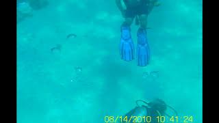 snorkeling mini DV MD80. Sharm El Shelkh - beach Hotel Reef Oassis Resort