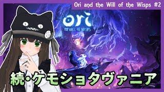 【どうぶつたちの森ゲー最新作】超美麗メトロイドヴァニア『Ori and the Will of the Wisps』実況 #3(最終回…?)【クゥ #VTuber】