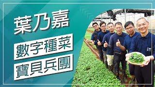 草地狀元-數字種菜 寶貝兵團(20180312播出)careermaster