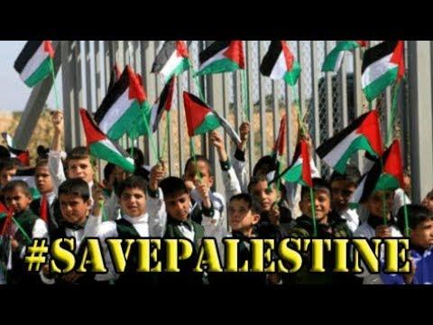VIDEO EKSLUSIF | KETIKA ANAK PALESTINA DITANYA TENTANG ISRAEL