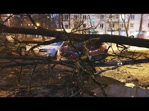 Ураган в Питере! Серьезные последствия шквалистого ветра