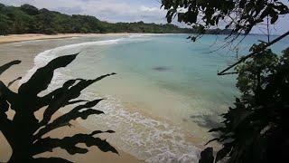 Guía de surf y turismo Panamá, Isla Bastimentos, Bocas del Toro