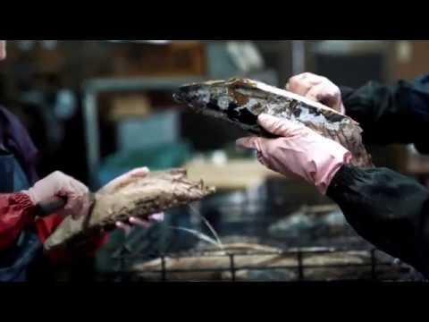 【EAT!MEET!JAPAN】在鹿兒島縣枕崎市探索日本料理的基礎材料:高湯