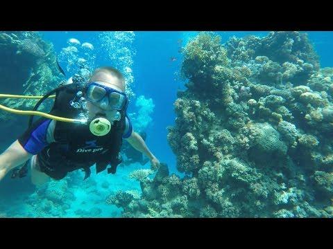 Отдых в Египте   Шарм эль шейх  Aqua Hotel Resort & Spa  Красное море  Дайвинг  GoPro