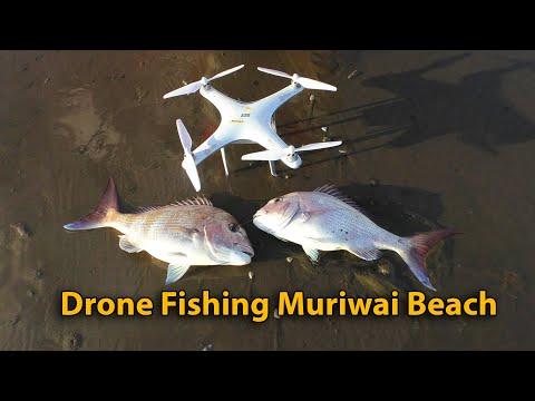Drone Fishing For Snapper - Muriwai Beach New Zealand - AEE Condor Fishing Drone