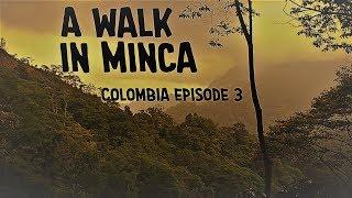 A walk in Minca [Minca - Colombia - Episode 3]