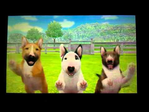 Youtube Nintendo Dog Cats