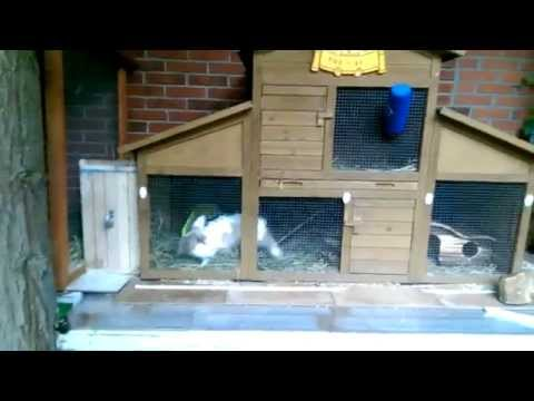 konijnen tunnel :-)
