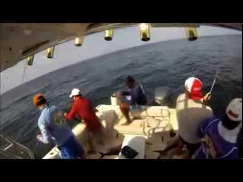 Costa Rica Fishing Charters - Costa Rica Sport Fishing Charters - Sportfishing In Costa Rica