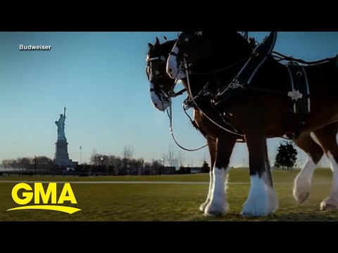 Super Bowl commercials will be different this year due to pandemic. Big Brand Advertisers like Coca Cola, Pepsi and Budweiser will be skipping this year's Super Bowl