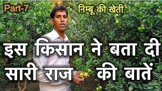 काग़ज़ी निम्बू की खेती |नींबू की खेती कैसे करे की ज़्यादा उत्पादन हो  |Lemon Farming in india|