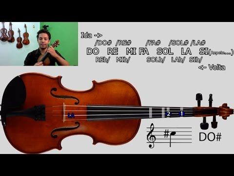 COMO ACHAR AS NOTAS NO VIOLINO COM A PARTITURA | Aulas de Violino Online | INTRODUÇÃO #10