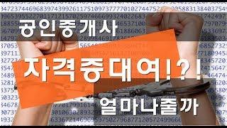 달숙이 e05 공인중개사 불법 자격증대여 얼마나줄까?