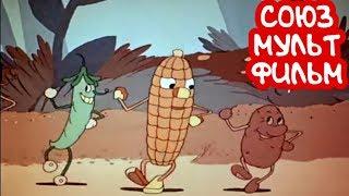 КЛАССНЫЙ МУЛЬТИК Веселый Огород Союзмультфильм Советские мультики для детей