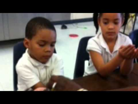 Western Hills Primary The Dolphin Tails - FWAS Promo