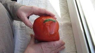 как сделать шкатулку из тыквы