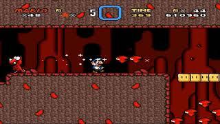 Super Mario World - Year of the Yoshi Redux #8