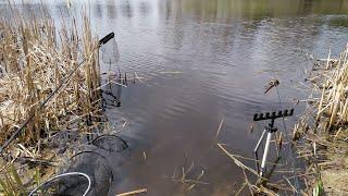 Рыболовные Приключения Рыбалка на Реке Ловля на Фидер