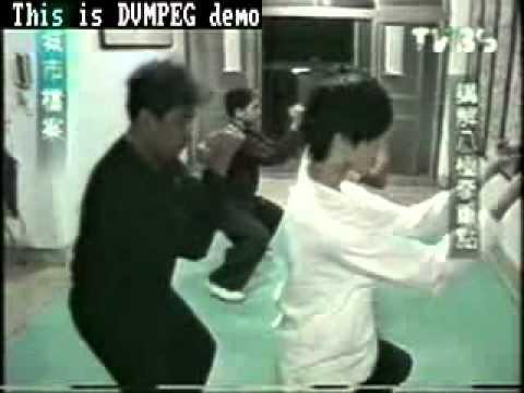 大內八極拳金立言教官 TVBS城市檔案專訪 - YouTube