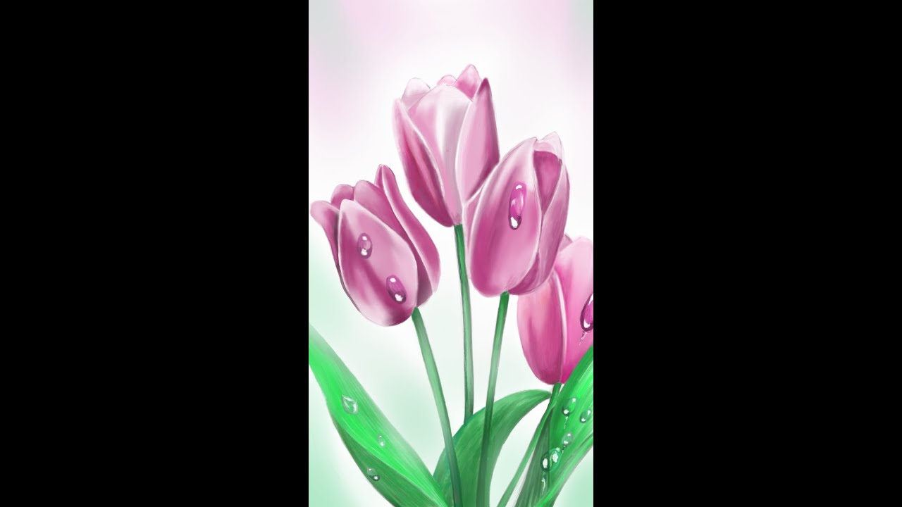 samsung galaxy note 3 drawing flowers tulips with water droplets