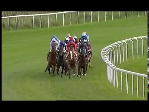 Ladbrokes St Leger Stakes 2008