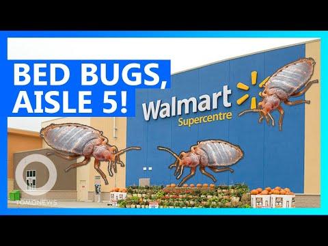 Kevin & Liz - Somebody put bedbugs in a Walmart