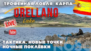 Трофейный карпфишинг на озере Орельяно вторая экспедиция выпуск 3