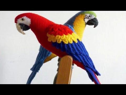 Попугай ара крючком схема и описание