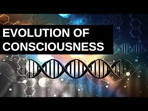 Evolution of Consciousness: Eight-Circuit Model and Positive Disintegration
