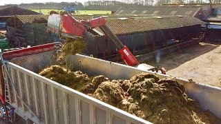 trying-to-sell-the-lot-clamp-silage
