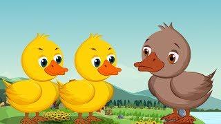 The Ugly Duckling - Bengali Fairy Tales - টি উগলি ডাকলিং - Bangla Rupkothar Golpo Cartoon