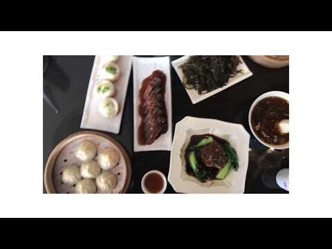 Shenzhen Snapshots   Travel Vlog pt.2
