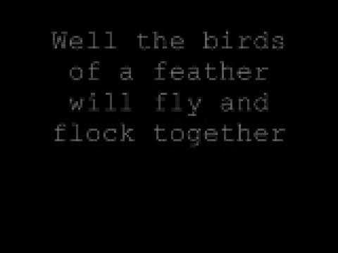Freak Magnet by Violent Femmes - From the album
