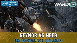Reynor vs Neeb (ZvP) - IEM Katowice 2019 Server Qualifiers