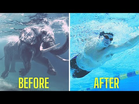 5 Quick Tips for Front Crawl in 2021
