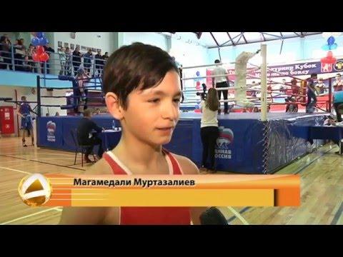 В Мегионе состоялся 7 турнир по боксу на кубок Главы города