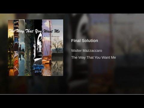 Walter Mazzaccaro - Final Solution