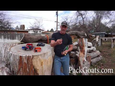 Pack Goat Bells